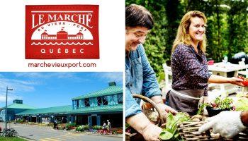 Québec Exquis Activité Marché Éphémère au Marché du Vieux-Port